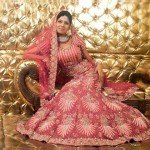 Bridal Walima Dresses 2013 For Pakistani Brides Life N