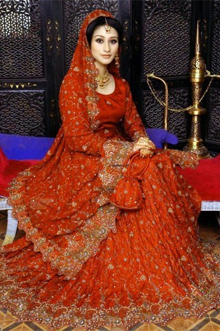 Latest Wedding Lehengas Trends 2014 0021