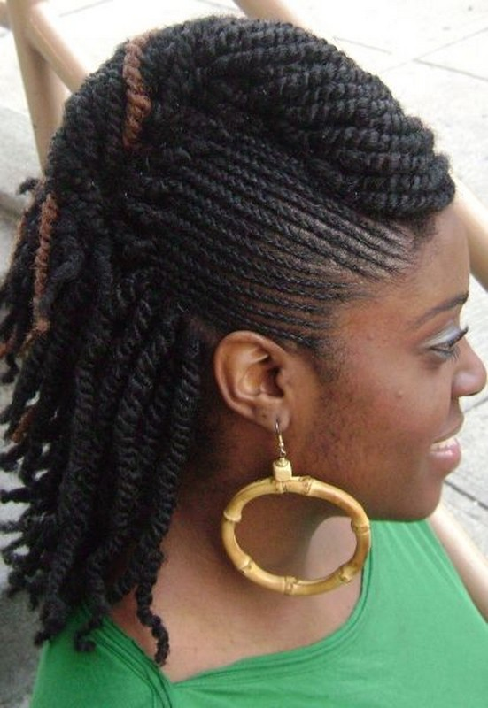 Latest Braided Hairstyles For Black Women 2014 14 - Life n