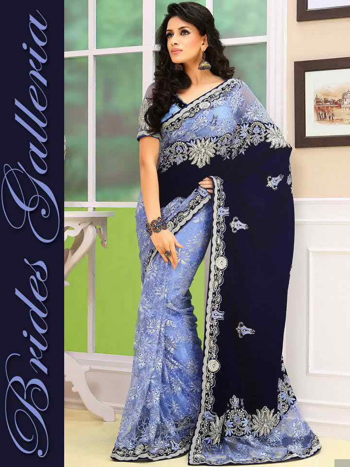Latest Trends Of Indian Sarees Designs 2014 For Women004